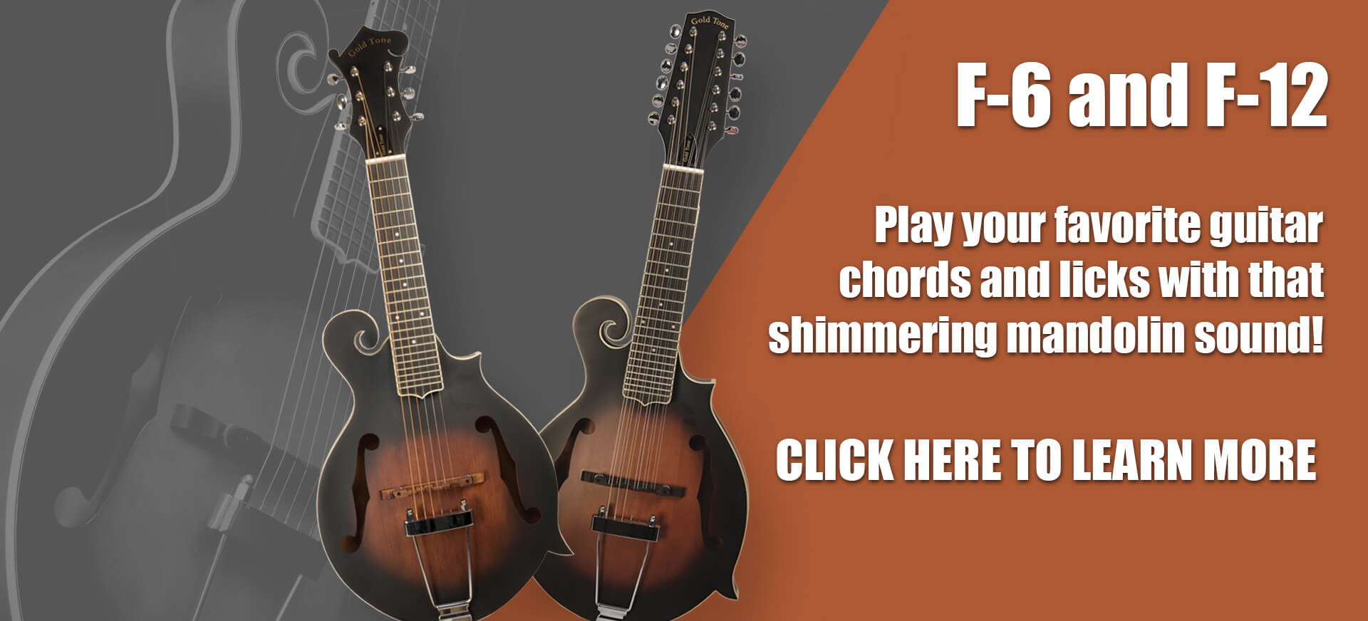 The F-6 and F-12. Play your favorite guitar chords and licks with that shimmering mandolin sound. Click here to learn more!