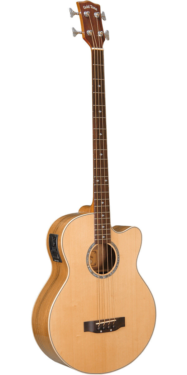 ABG-4: Acoustic Bass Guitar