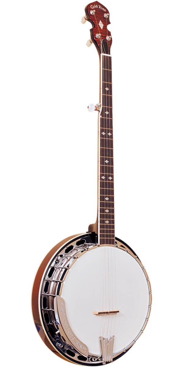 BG-250F: Bluegrass Banjo with Flange