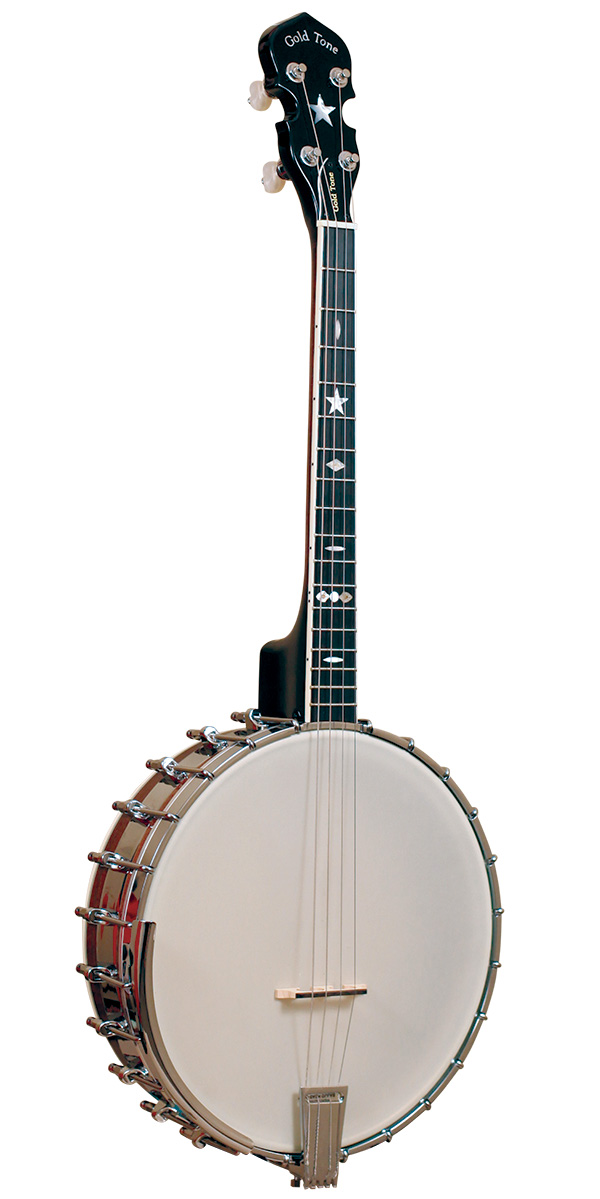 IT-800: Irish Tenor Banjo