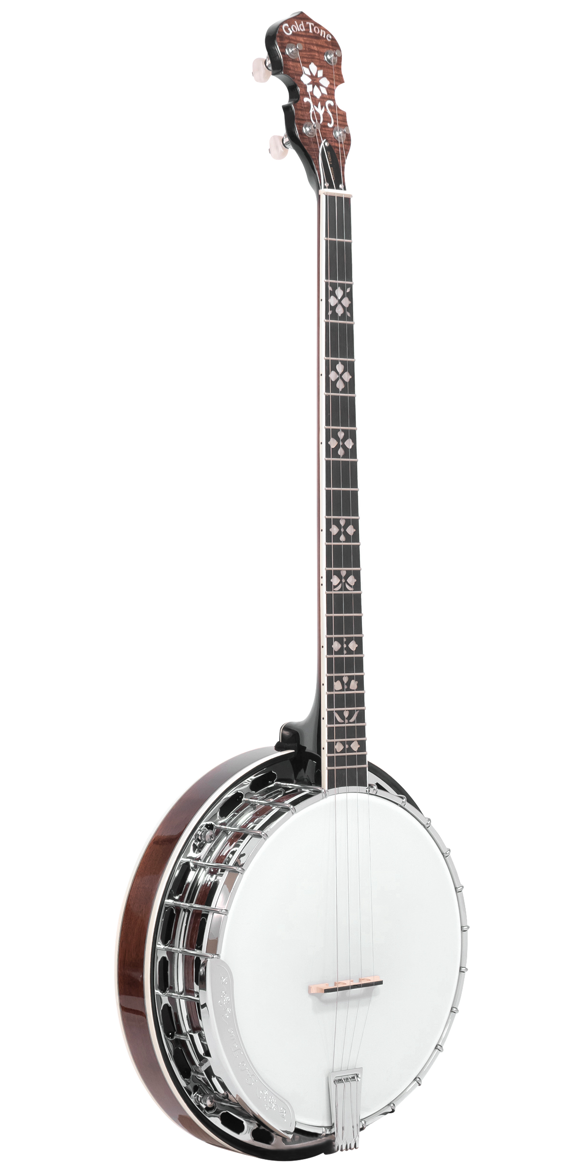 PS-250: Plectrum Special Banjo