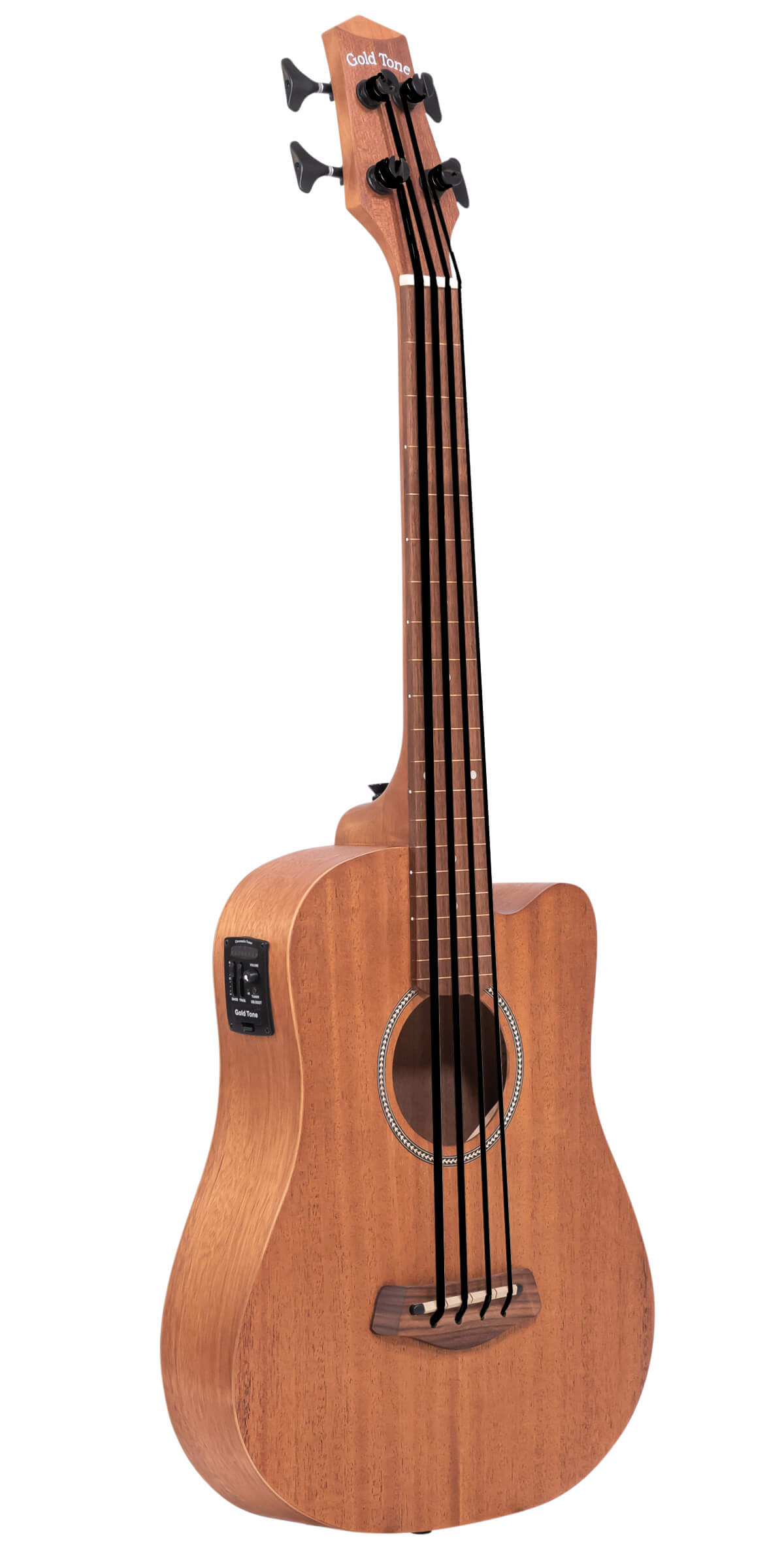 M-BassFL: Fretless Acoustic-Electric MicroBass